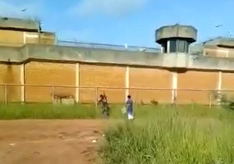 Suspeitos arremessam drogas e celulares pelas muralhas do presídio (Reprodução)