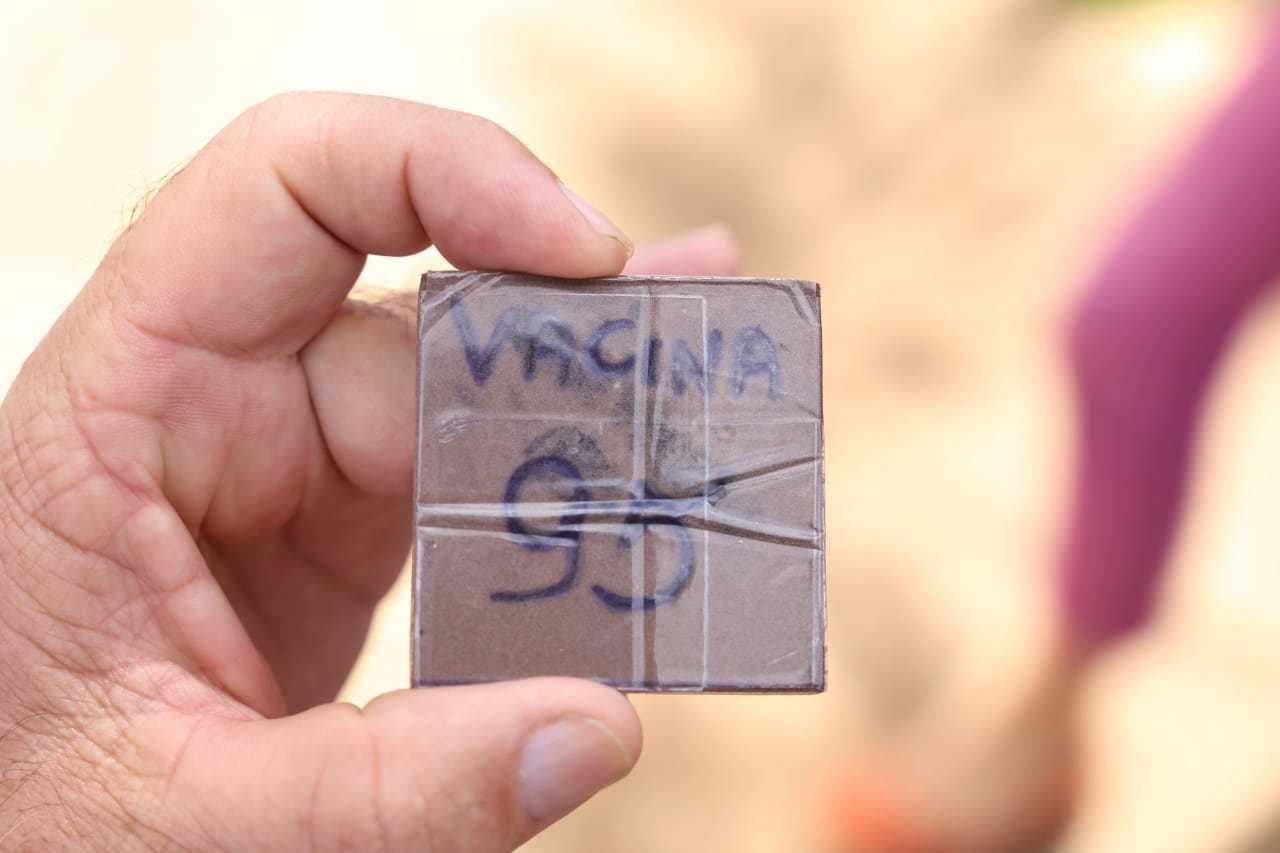 Paciente mostra senha para tomar vacina em posto de saúde de Campo Grande (Foto: Paulo Francis/Arquivo)