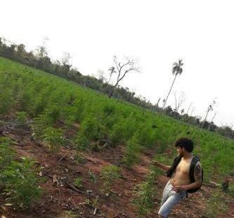 Um dos rapazes encontrados mortos em meio a uma plantação de maconha. (Foto: Direto das Ruas)