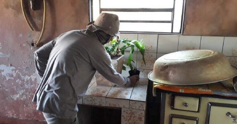 Agente de saúde observa se há água parada em vaso de planta (Foto: Divulgação)