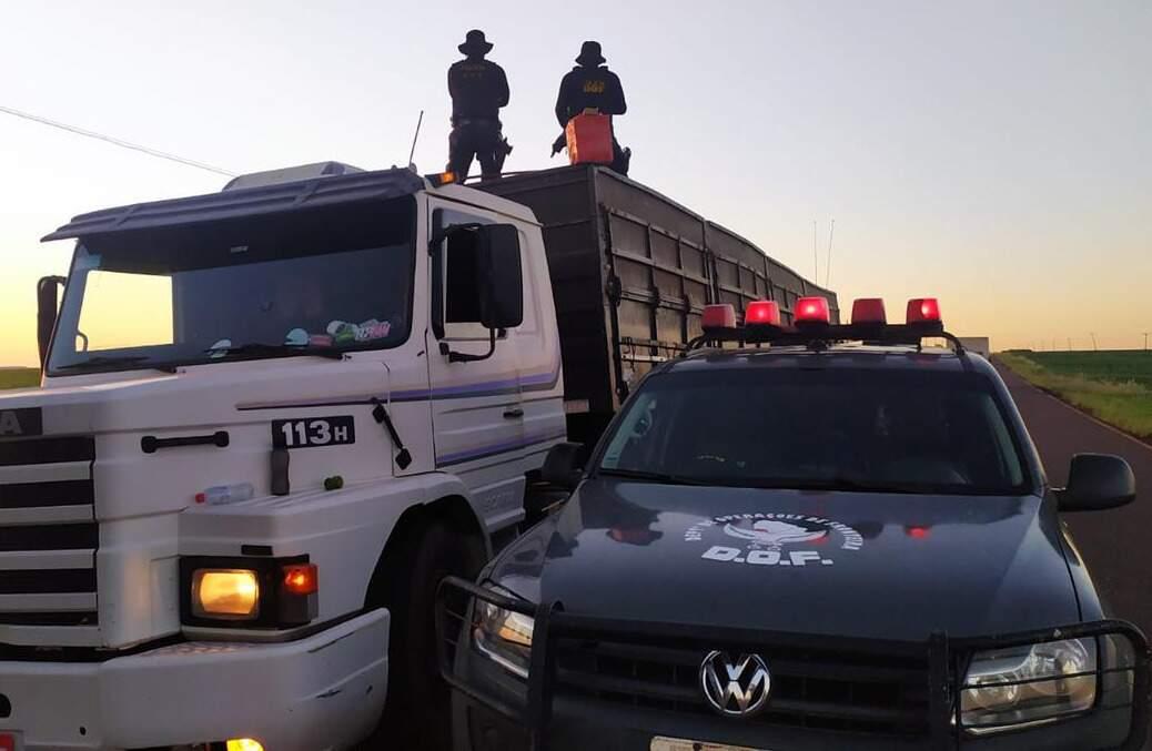 Policiais do DOF sobre a carreta logo após a apreensão, na MS-386 (Foto: Divulgação)