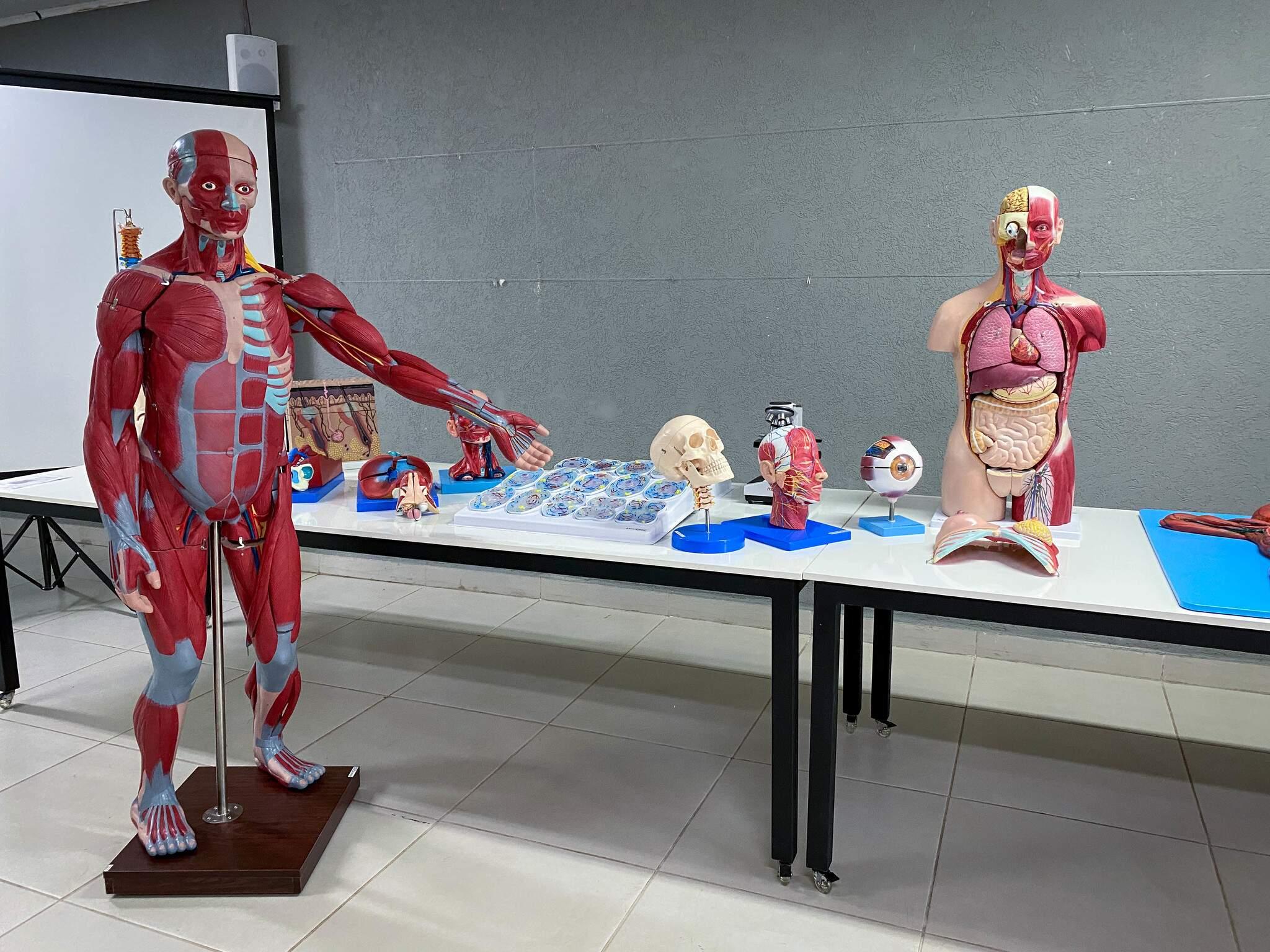 Para uso nas aulas práticas, a Faculdade Insted já conta com laboratório pronto para especializações da área da Saúde um grande diferencial para os estudantes. (Foto: Divulgação/ Insted )