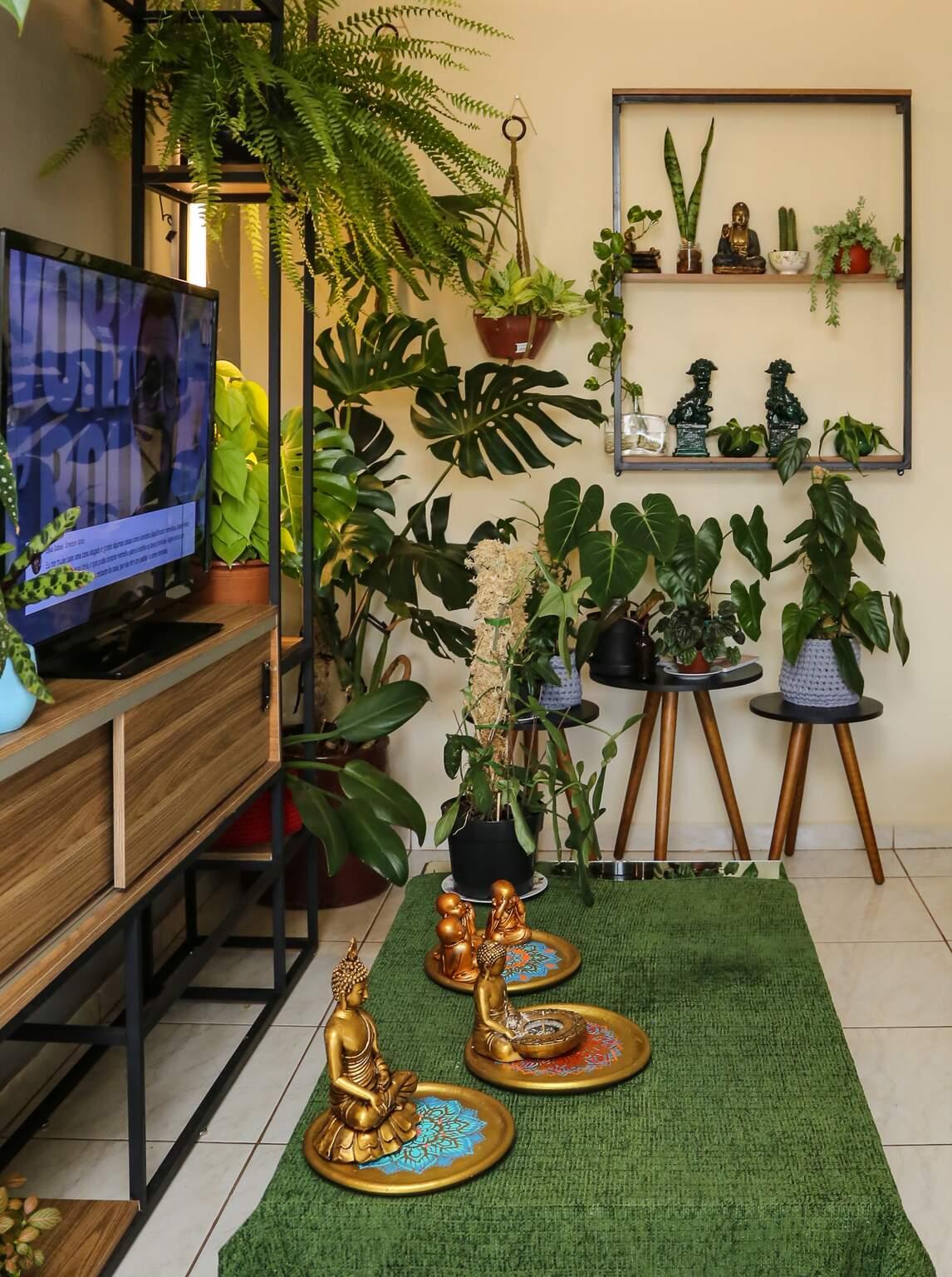 Além das plantas, ele aposta em vários itens decorativos. (Foto: Kísie Ainoã)