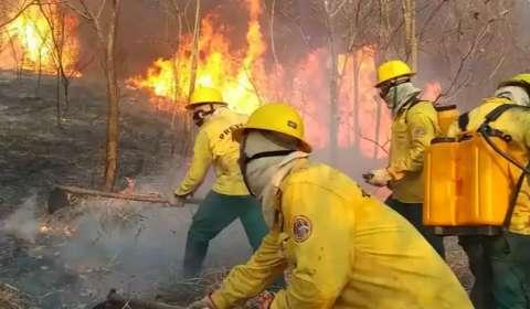 Ministério decreta emergência ambiental em MS de maio a dezembro de 2021