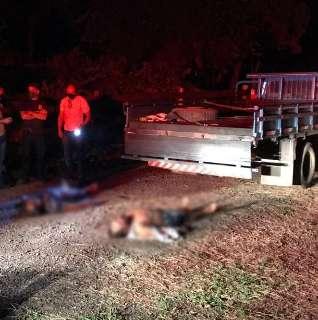 Casal chega em chácara e encontra dois homens mortos dentro de caminhonete