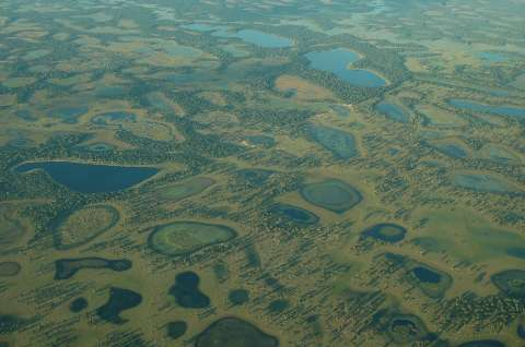 Alerta do Dia das Águas é o risco de nova tragédia no Pantanal