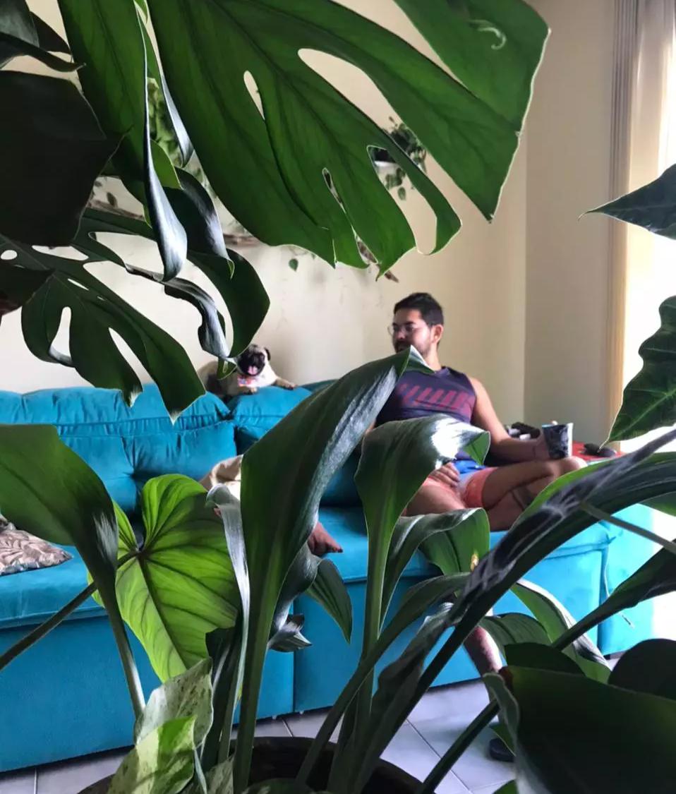 Ao lado do mascote da casa, Marcelo tem casa alto astral com as plantas (Foto: Arquivo Pessoal)