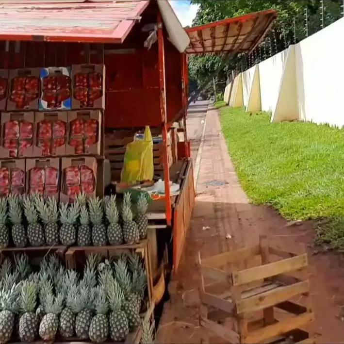 Frutas vendidas por Danilo diariamente na kombi (Foto: Direto das Ruas)