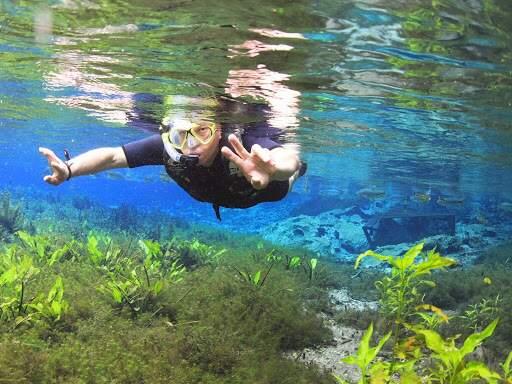 Flutuação no Aquário Natural, em Bonito, um dos atrativos que resistiram neste feriado (Foto/Divulgação: Aquário Natural)
