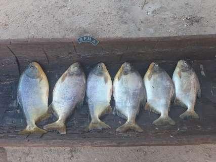 Em pouco mais de 24 horas, fiscalização flagrou 5 pontos de pesca predatória
