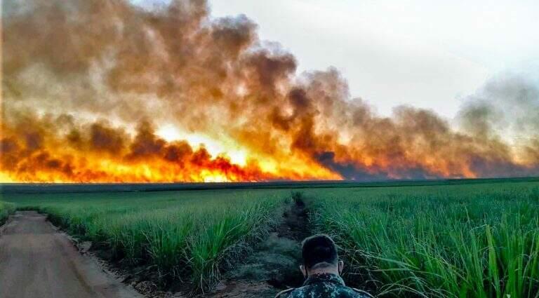 Coletivo de organizações da sociedade civil que atua em prol das questões socioambientais na Bacia Hidrográfica do Alto Paraguai na Bolívia, Brasil e Paraguai emite alerta (Foto Divulgação)