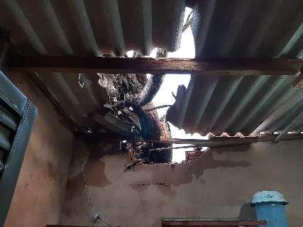 Durante ventania, galho de árvore quebra telhado e deixa casa sem energia