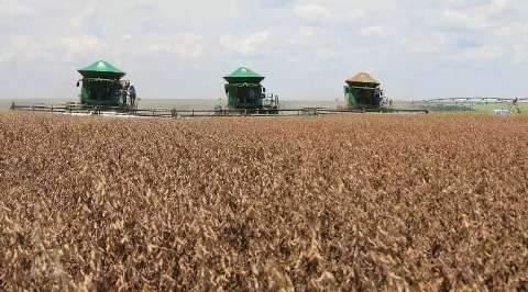 Produção de 13,3 milhões de toneladas confirma safra recorde de soja em MS