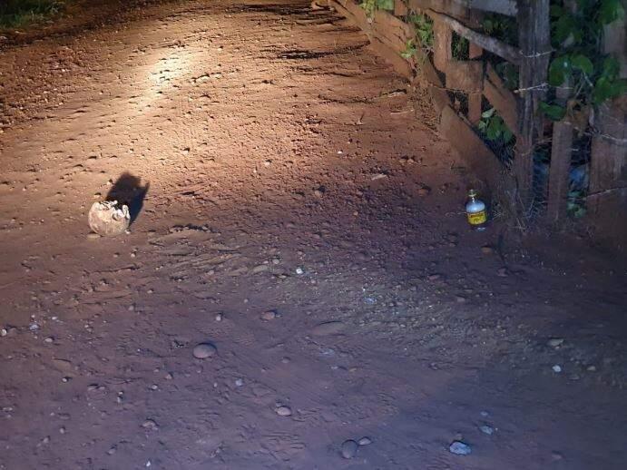 Crânio foi encontrado ao lado de garrafinha de pinga. (Foto: Perfil News)