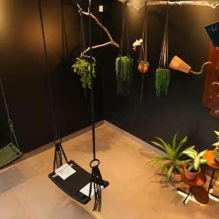Arquiteta cria móveis inspirados no Pantanal e recita poesia em fábrica