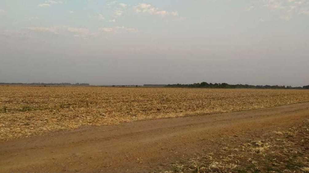 Fazenda Gameleira tem cultivo de soja e fica perto do atual aterro sanitário. (Foto: Reprodução)