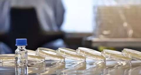 Farmacêutica pede registro para nova vacina da dengue
