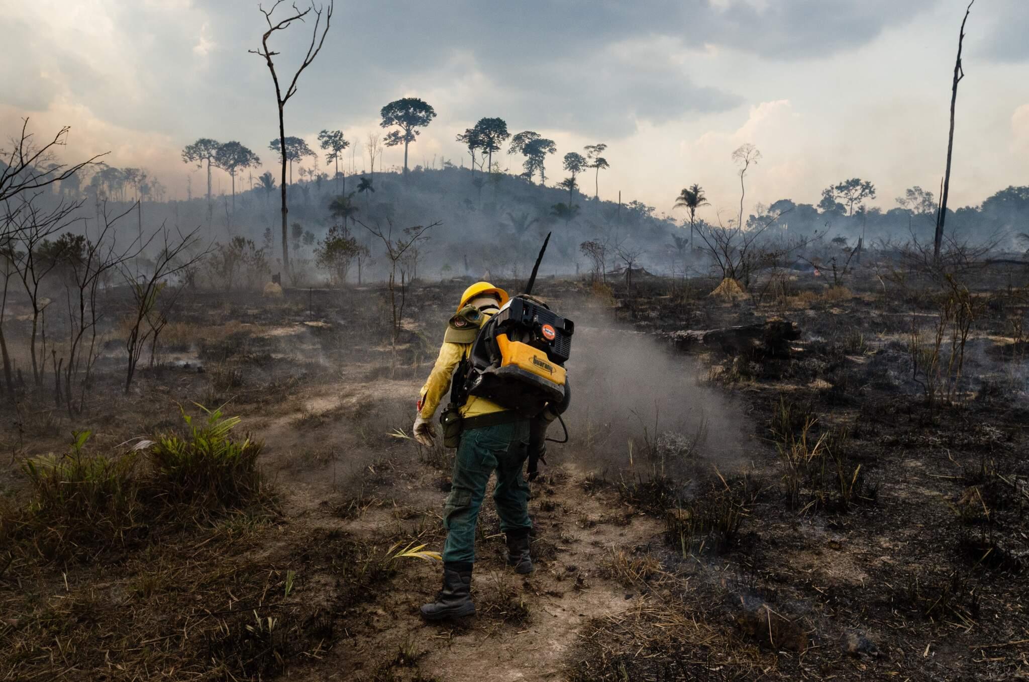 Queimadas em 2019 e 2020 atingiram a região do Pantanal em MT e MS (Foto/Arquivo)