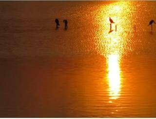 Eliane Ware e outros leitores indicaram a beleza da vista da Lagoa Itatiaia.