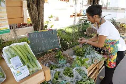Você sabe onde comprar orgânicos em Campo Grande? Aponte no mapa