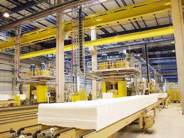 MS é o terceiro maior produtor de papel e celulose do país