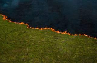 """Obra """"Linha de Fogo"""" da série """"Pantanal 2019"""" é de autoria do fotógrafo João Farkas e está à venda por R$ 20 mil (Foto Divulgação)"""