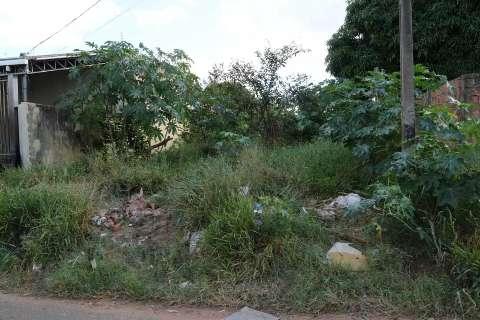 Donos de terrenos sujos são alvo de campanha da Prefeitura