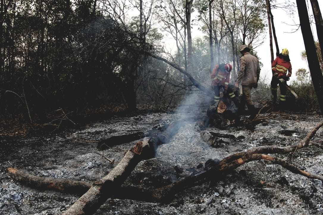 Bombeiros combatendo focos em Porto do Manga, em Corumbá, no Pantanal. (Foto: Arquivo/Chico Ribeiro)