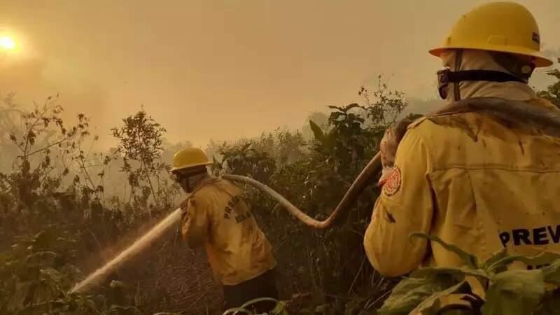 Portaria até liberou contratação, mas brigadistas só devem voltar ao Pantanal em julho. (Foto: Arquivo/Prevfogo)