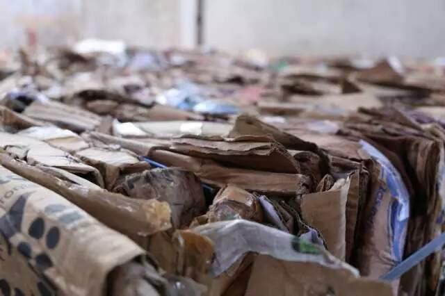 Papelão separado e acondicionado em Unidade de Tratamento de Resíduos de Campo Grande (Foto: Kísie Ainoã)(Foto: Kísie Ainoã/Arquivo)