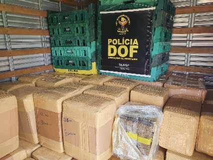 Caminhão com destino a Capital é apreendido com quase 3 toneladas de maconha