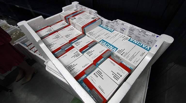 Lote de vacinas que desembarcou em MS (Foto: Governo de MS)