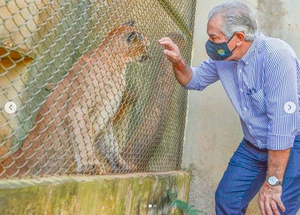 Pela primeira vez na história do Estado é sancionada lei de prevenção e proteção a fauna com determinação de multa por irregularidade (Foto Instagram)