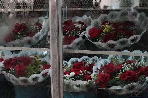 """""""Vai tudo para o lixo"""", dizem donos de floriculturas sobre ordem para fechar"""