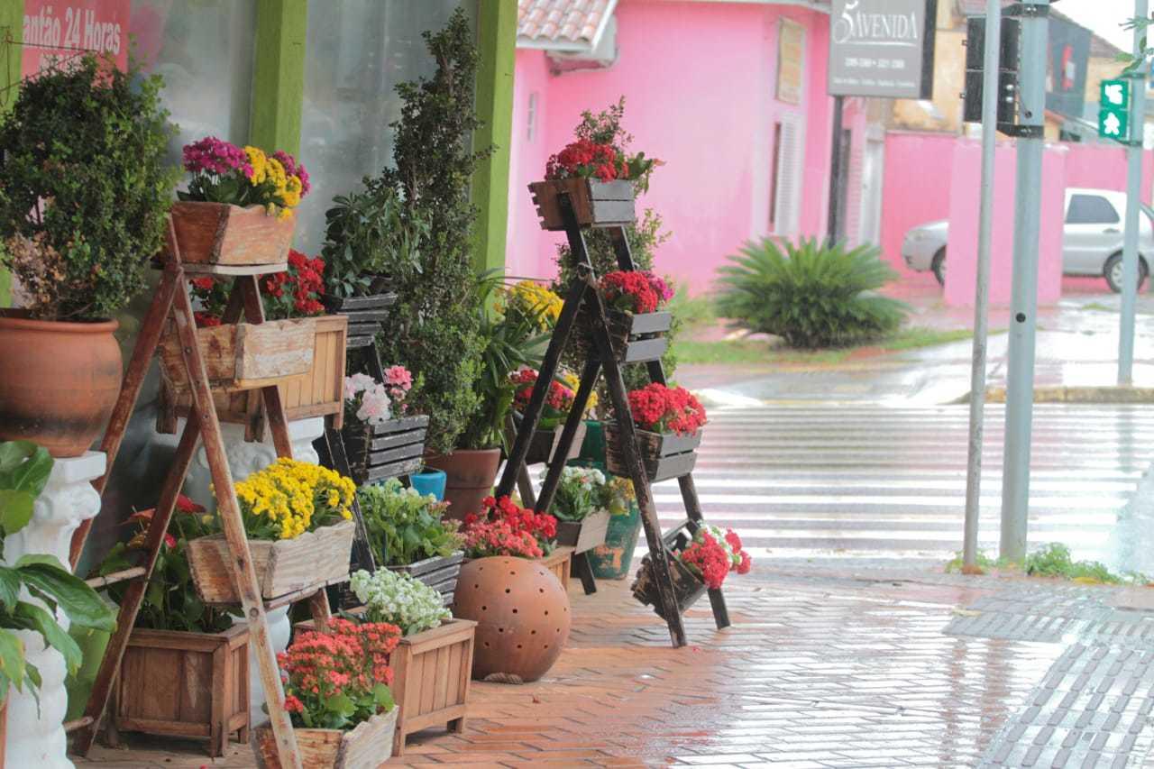 Governo esclarece que floriculturas, assim como outros serviços não essenciais, podem funcionam no sistema delivery (Foto: Marcos Maluf)