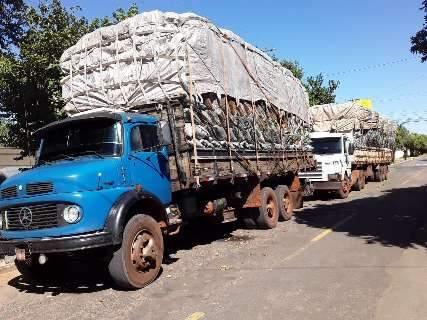 Carvoaria é multada em R$ 49,2 mil por transportar carga ilegal