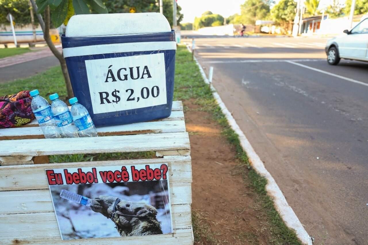 Plaquinha na banca mostra um camelo bebendo água (Foto: Paulo Francis)