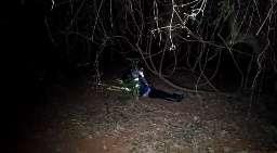 Mulher de detetive é arrastada para matagal e assassinada