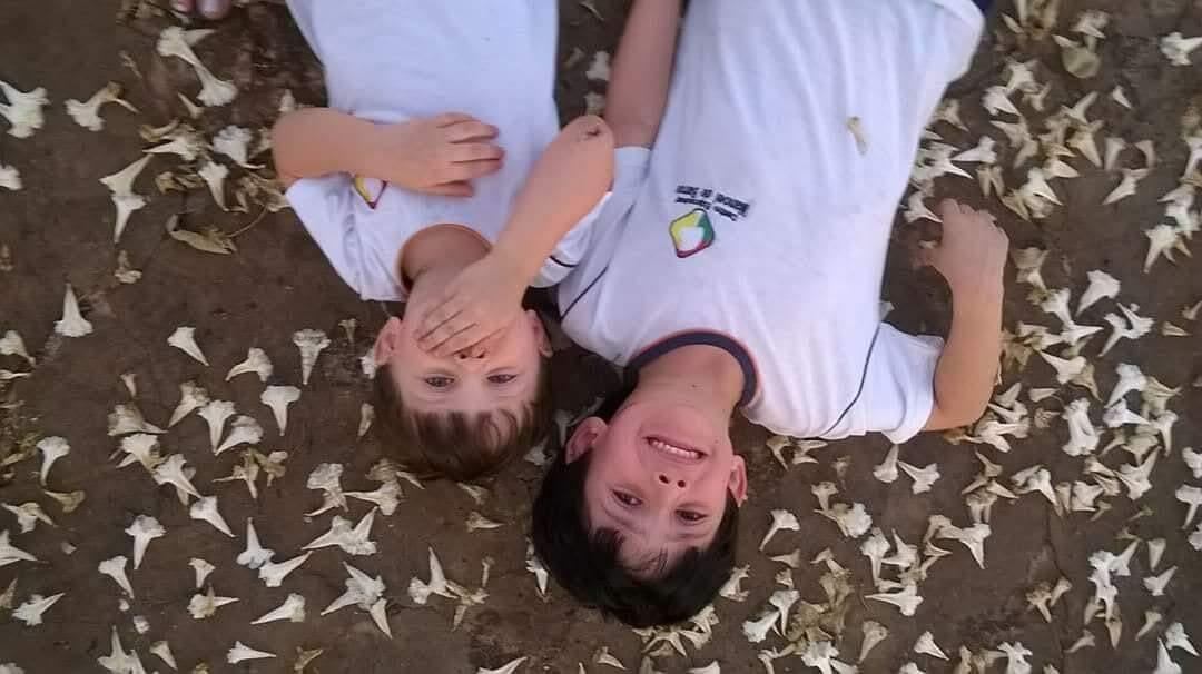Registro de 2015, com Pedro e Henrique deitados no chão coberto por flores de Ipê. (Foto: Arquivo Pessoal)