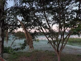 Amanhecer do dia em Dourados; vegetação congelou com a geada (Foto: Helio de Freitas)