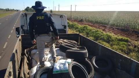Motorista é preso transportando 4 toneladas de agrotóxicos