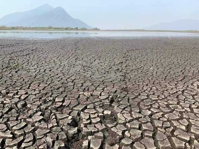 Maioria acha que governo federal não está interessado em defender meio ambiente