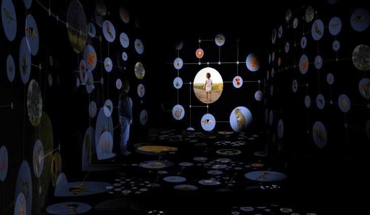 MiBio será atração especial dentro do Aquário do Pantanal com show de iluminação e interatividade (Foto Ilustração)
