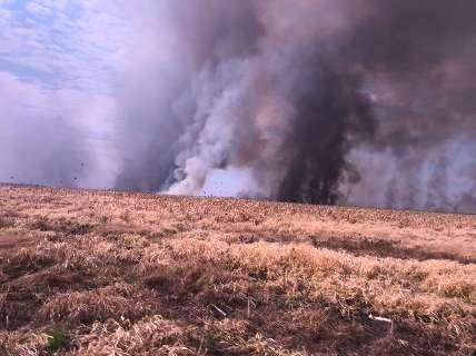 Dois aviões vão ajudar no combate ao incêndio no Banhado do Rio da Prata