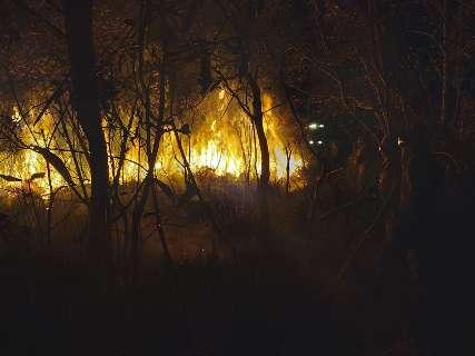 Incêndio no Banhado do Rio da Prata já devastou 3 mil hectares de vegetação