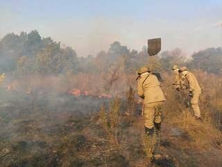 Bombeiros combatem incêndio na região entre Jardim e Bonito (Foto/Divulgação: CBMS)