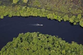 Região pantaneira vista do alto. (Foto: WWF-Brasil/Adriano Gambarini)