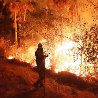 Em terra ou pelo céu, combate ao fogo que já devastou 32 mil hectares é intenso