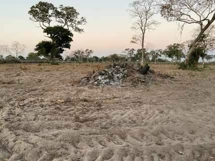Apesar de proibição, fazendeiro é multado por usar fogo para limpar pastagem