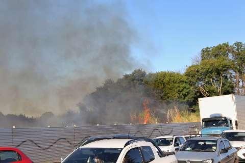 Bombeiros combatem fogo em área de quase 2 hectares na região da Vila Carvalho